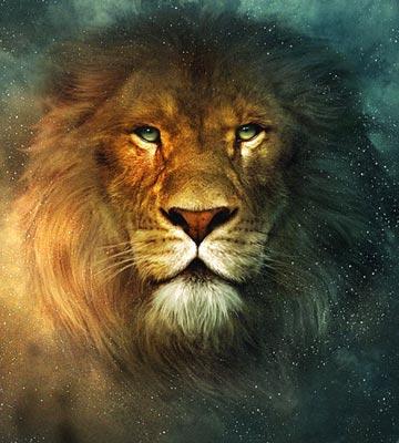 b1b97-aslan2