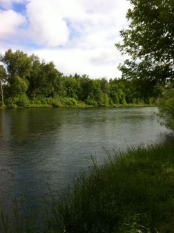 Beautiful river over at Touvelle Park