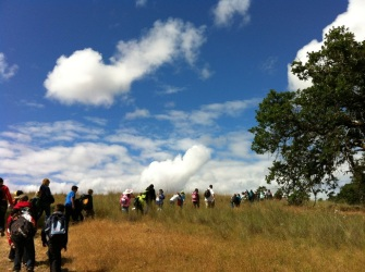I love this picture of the kids walking through the grasslands. Such amazing sky!